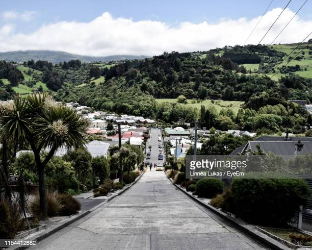 road amidst plants and trees against sky in city - dunedin new zealand stock pictures, royalty-free photos & images