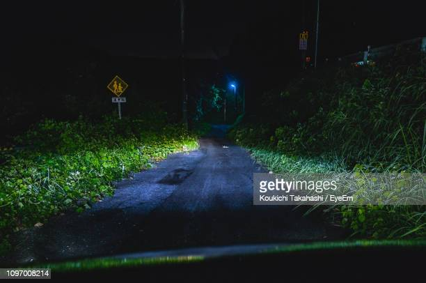 Road Amidst Plants At Night