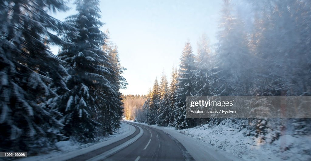 Road Amidst Snow Covered Trees Against Sky : Stockfoto