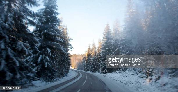 road amidst snow covered trees against sky - paulien tabak stock pictures, royalty-free photos & images