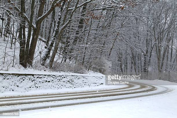 Road amidst Snow Covered Trees