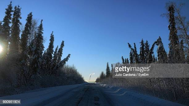 Road Amidst Trees Against Clear Blue Sky During Winter