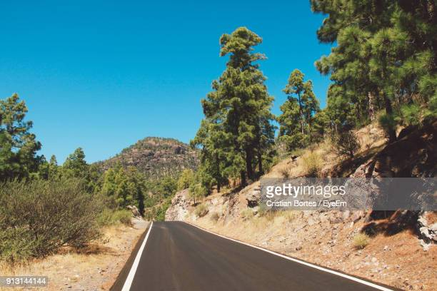 road amidst trees against clear blue sky - bortes cristian stock photos and pictures