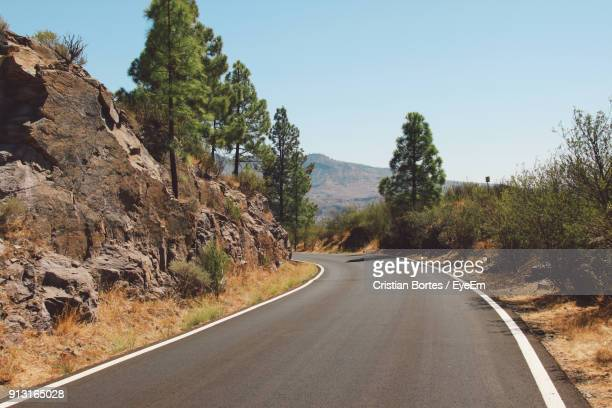 road amidst trees against clear sky - bortes cristian stock photos and pictures