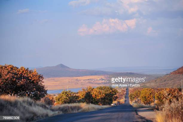 road amidst trees against sky during autumn - jose ayala stock pictures, royalty-free photos & images