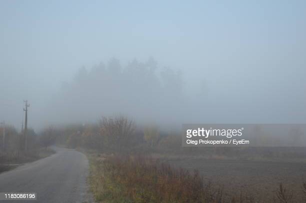 road amidst trees against sky during foggy weather - oleg prokopenko stock pictures, royalty-free photos & images