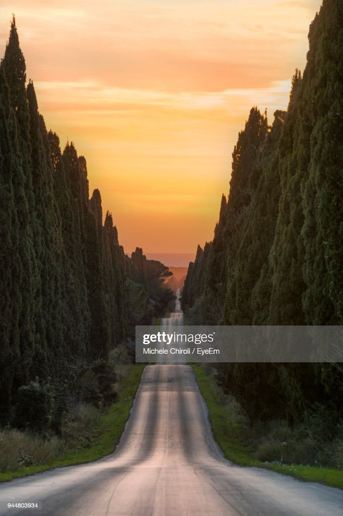 Road Amidst Trees Against Sky During Sunset : Stock Photo