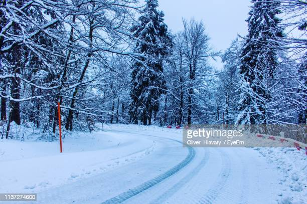 road amidst trees against sky during winter - thuringia stock pictures, royalty-free photos & images