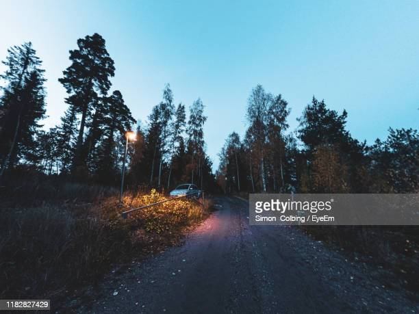 road amidst trees against sky in city - colbing stock pictures, royalty-free photos & images