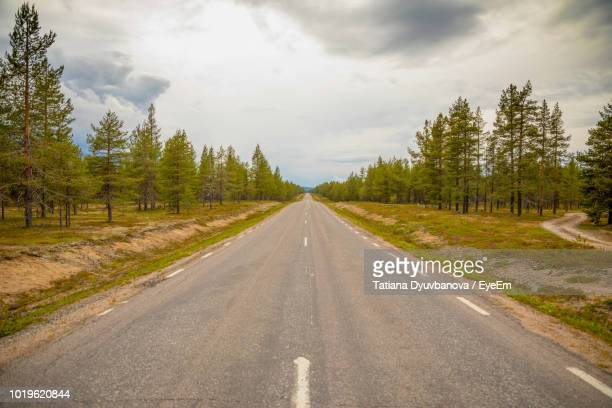 road amidst trees against sky - pine woodland stock pictures, royalty-free photos & images