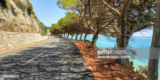 road amidst trees against sky - portugal stock pictures, royalty-free photos & images