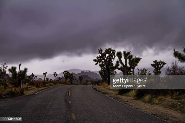 road amidst trees against sky - arizona stock pictures, royalty-free photos & images