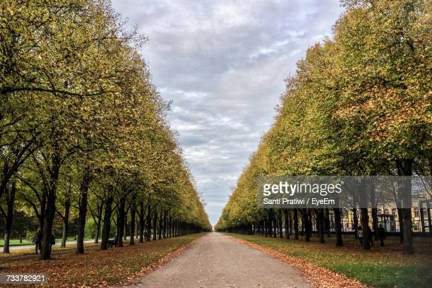 road amidst trees against sky - hanover germany stock pictures, royalty-free photos & images