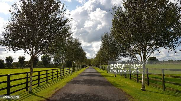road amidst trees against sky - kildare stock pictures, royalty-free photos & images