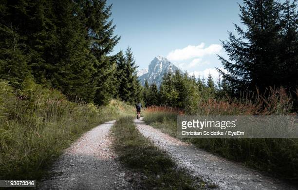 road amidst trees and plants against sky - christian soldatke stock-fotos und bilder