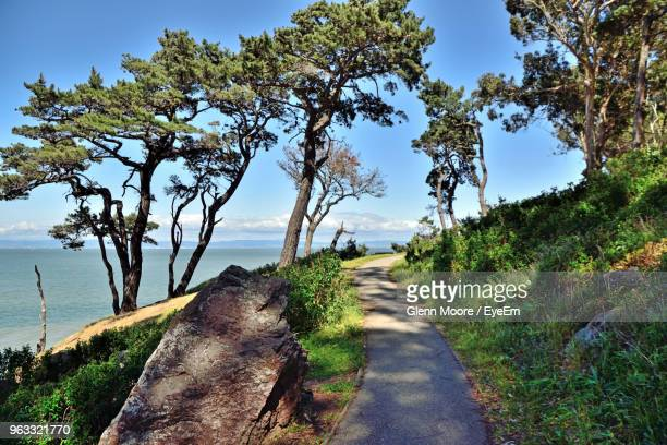 road amidst trees and sea against sky - san mateo county stock pictures, royalty-free photos & images
