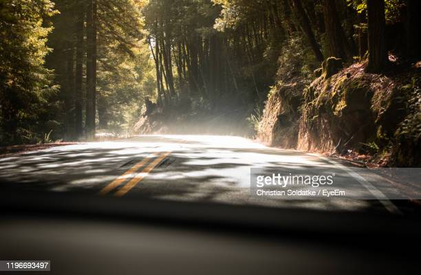 road amidst trees in forest seen through car windshield - christian soldatke stock pictures, royalty-free photos & images