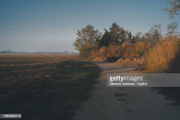 road amidst trees on field against sky - albrecht schlotter stock photos and pictures