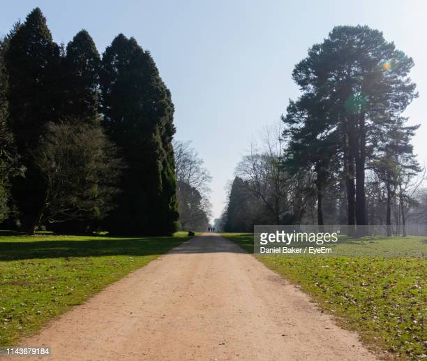 road amidst trees on field against sky - tetbury stock pictures, royalty-free photos & images