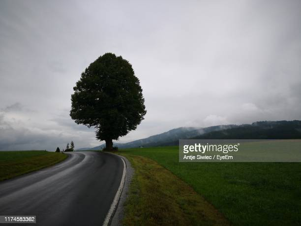road amidst trees on field against sky - bad kötzting stock pictures, royalty-free photos & images