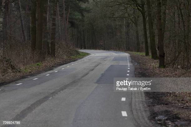 road amidst trees - paulien tabak stock pictures, royalty-free photos & images