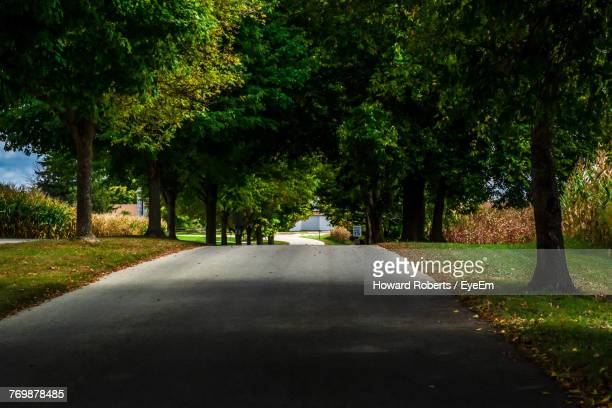 road amidst trees - montgomery county pennsylvania stock pictures, royalty-free photos & images