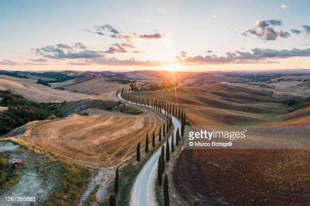 road among cypress trees, tuscany, italy - europe stock pictures, royalty-free photos & images
