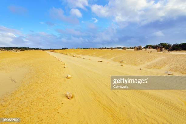 Road and Car Tyre Track at Pinnacles Desert, Western Australia
