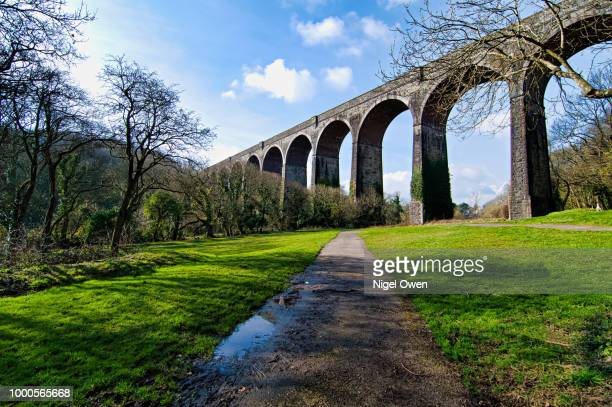 road and rail - nigel owen stock pictures, royalty-free photos & images