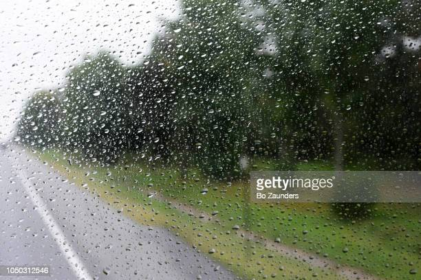 Road, and trees on the side of the road, as seen from a top front seat of a double decker bus, though a rain-spattered window.