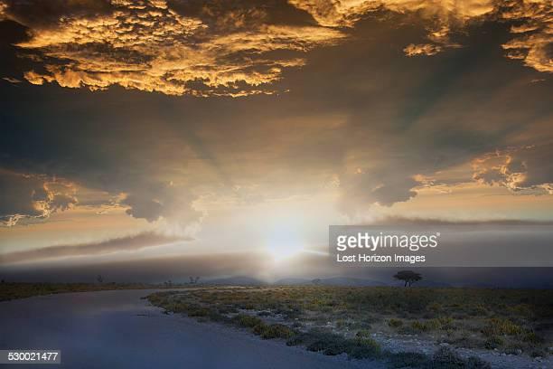 Road at sunrise, Etosha National Park, Namibia