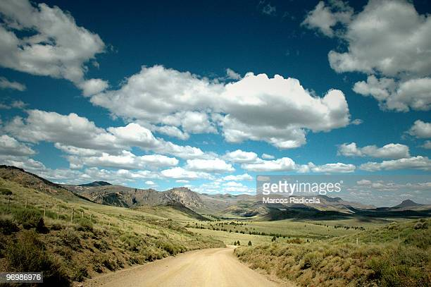 road at the patagonic steppe - radicella stock pictures, royalty-free photos & images