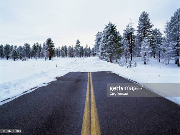 road blocked by snow - the end stock pictures, royalty-free photos & images