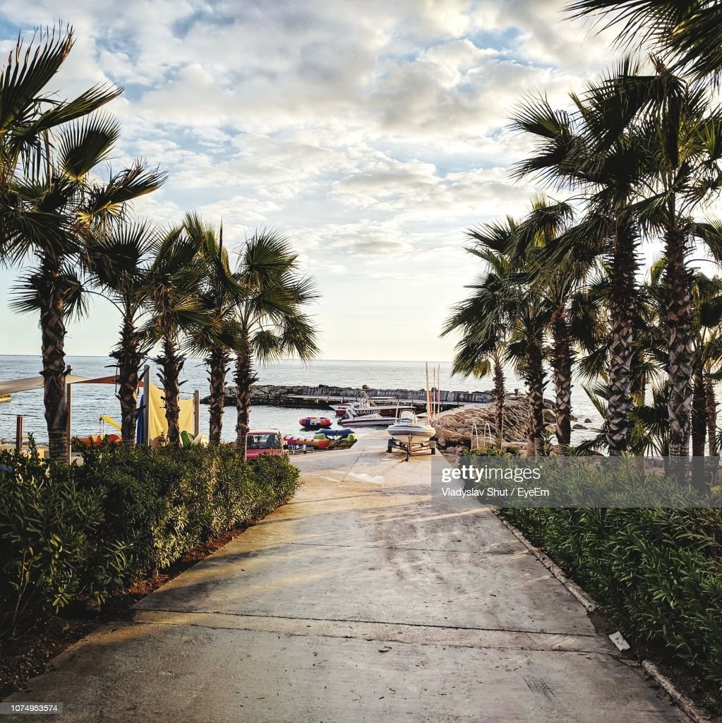 Road By Palm Trees Against Sky In City : ストックフォト