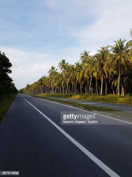 Road By Palm Trees Against Sky