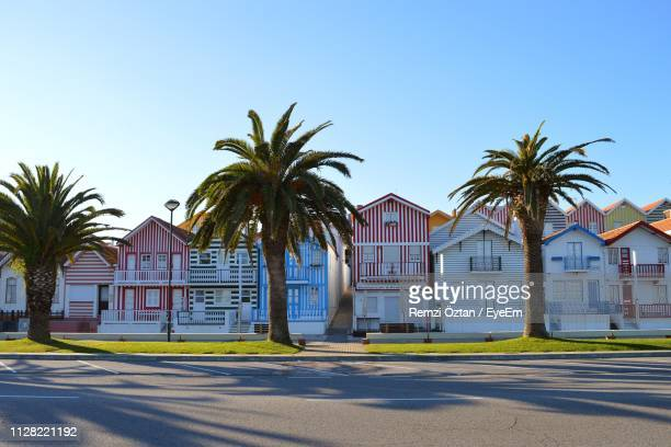 road by palm trees and buildings against sky - アヴェイロ県 ストックフォトと画像