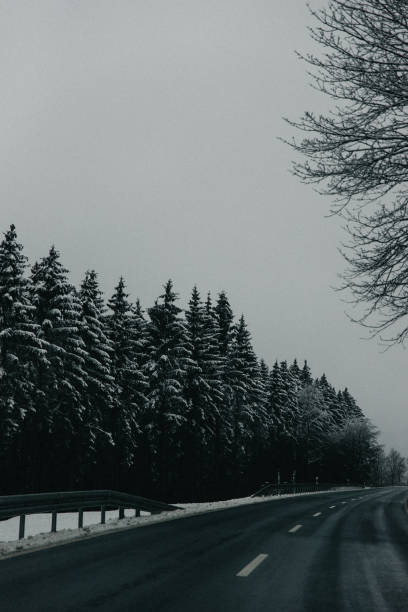 Road By Trees Against Clear Sky During Winter