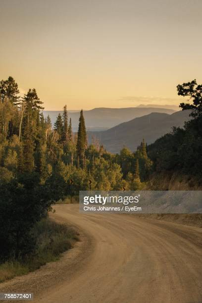 road by trees against clear sky - steamboat springs colorado stock photos and pictures