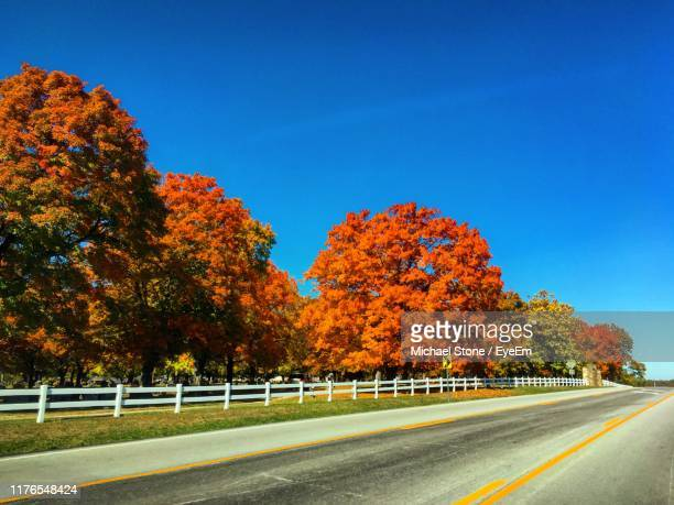 road by trees against sky during autumn - branson missouri stock pictures, royalty-free photos & images