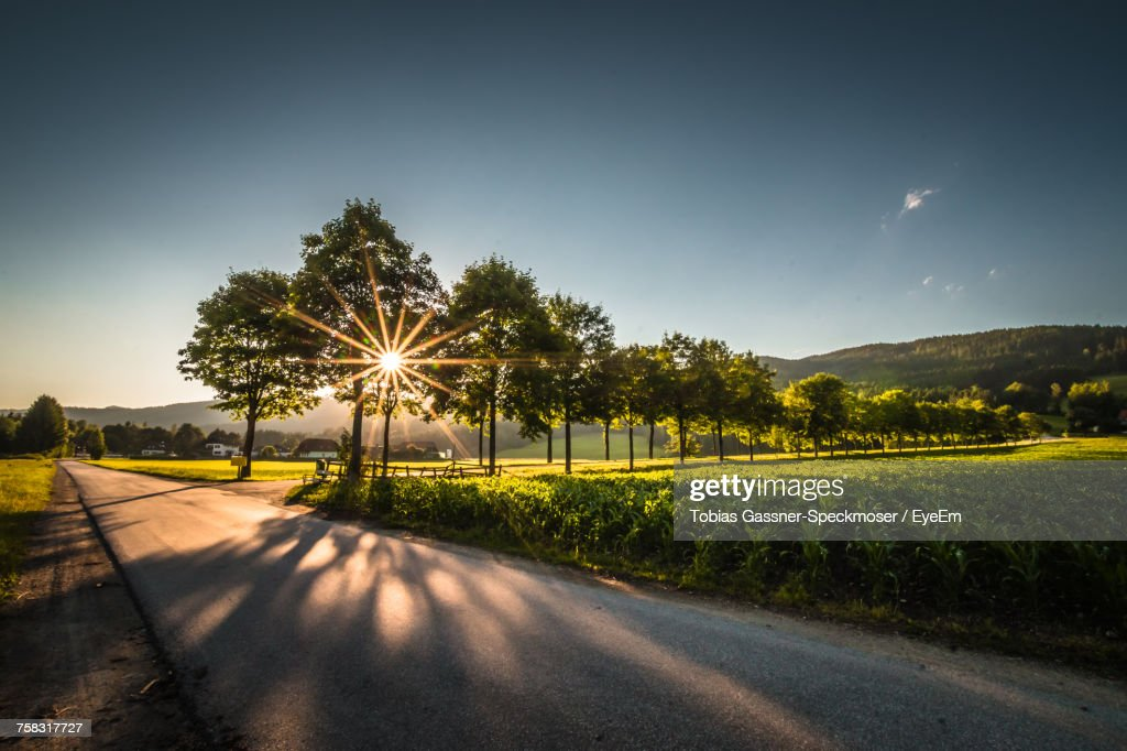 Road By Trees Against Sky During Sunset : Stock Photo