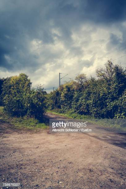 road by trees against sky - albrecht schlotter stock photos and pictures