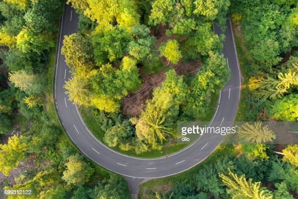 Courbe de la route dans la vue aérienne de la forêt