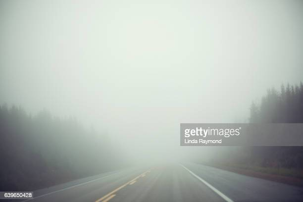a road filled with fog - fog stock pictures, royalty-free photos & images