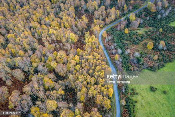road from above - scotland stock pictures, royalty-free photos & images
