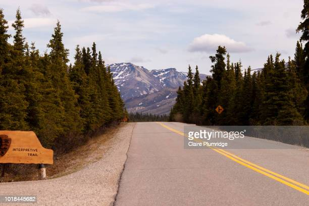 road in alaska - claire plumridge stock pictures, royalty-free photos & images