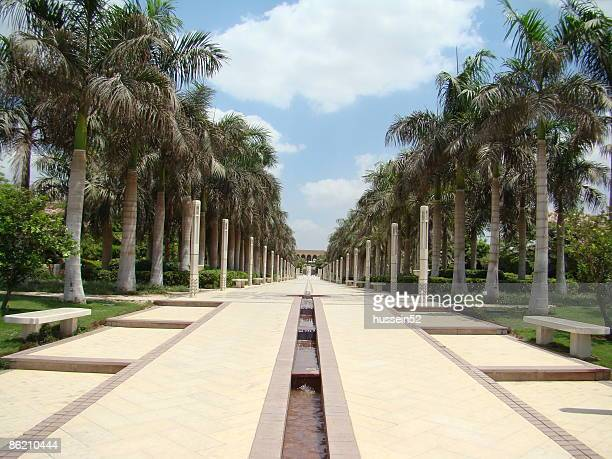 road in azhar park - hussein52 stock photos and pictures