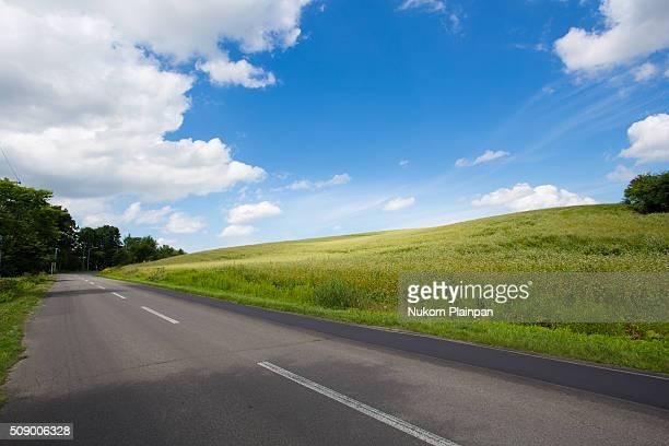 Road in Biei