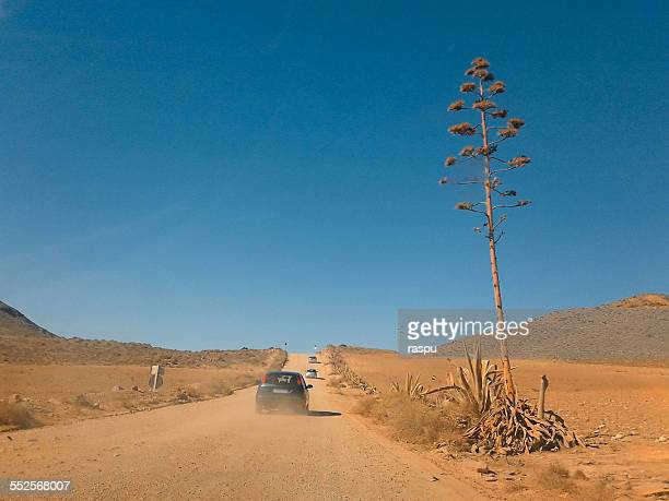 Road in Cabot de Gata, Spain