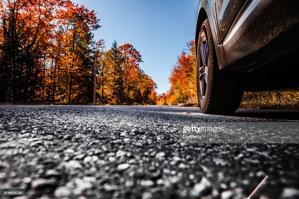 Road in canadian parks area in fall : Stock Photo
