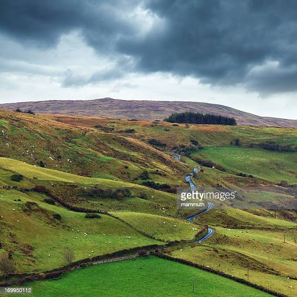 road in ireland - county antrim stock pictures, royalty-free photos & images
